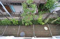 窓から見下ろした庭の様子。(210号室)(2015-08-20,専有部,ROOM,2F)