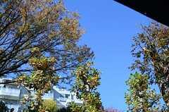 周辺は緑の多い立地です。(2012-11-27,共用部,OTHER,1F)