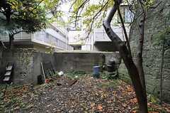 庭の様子。(2012-11-27,専有部,ROOM,3F)