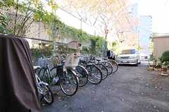 自転車置き場の様子。(2012-11-27,共用部,GARAGE,1F)