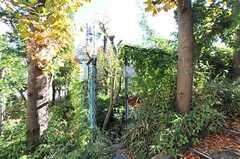 建物の裏にある入り口。(2012-11-27,共用部,OTHER,1F)