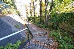 裏口に行くにはこんな階段を下っていきます。駅への近道なのだそう。(2012-11-27,共用部,OTHER,1F)