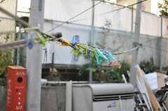 洗濯物ロープはこんな感じ。(2012-12-28,共用部,OTHER,1F)