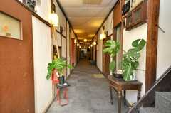 シェアハウスの正面玄関から見た内部の様子。(2009-01-13,周辺環境,ENTRANCE,1F)