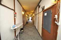 廊下の様子。傍らにはアイロン台が。(2009-01-13,共用部,OTHER,1F)