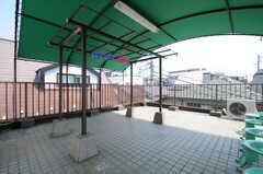 屋上の様子。(2013-04-15,共用部,OTHER,3F)