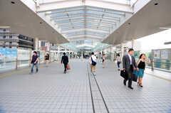 JR各線・大崎駅周辺の様子。(2012-05-28,共用部,ENVIRONMENT,1F)