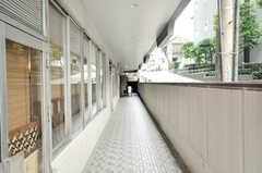 マンション入口までのアプローチの様子。(2009-06-25,共用部,OTHER,1F)