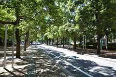 シェアハウスからJR各線・大森駅に向かう道の様子。(2015-07-14,共用部,ENVIRONMENT,1F)