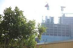 高層ビルと庭園。(703号室)(2013-03-28,専有部,ROOM,7F)