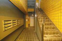 エレベーターホールの様子。(2008-12-23,周辺環境,ENTRANCE,1F)