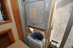 洗濯機、乾燥機の様子。(2011-01-17,共用部,LAUNDRY,1F)