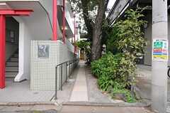シェアハウスは路地の奥にあります。手前に植わっている桜は近所でも名所として有名なのだそう。(2013-10-31,共用部,OUTLOOK,1F)