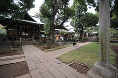神社を通って行く道もあります。(2013-10-31,共用部,ENVIRONMENT,1F)