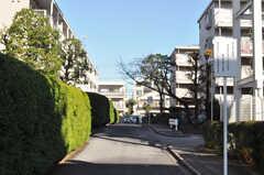 団地の敷地内は緑が多く、静かです。(2010-12-15,共用部,ENVIRONMENT,1F)