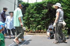 ガーデニングイベントの様子16。耕して花を仮置きします。(2013-06-30,共用部,PARTY,1F)