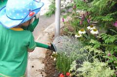 ガーデニングイベントの様子19。手伝ってもらって水やり。(2013-06-30,共用部,PARTY,1F)