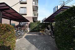 自転車置き場の様子。屋根付きです。(2017-03-01,共用部,GARAGE,1F)