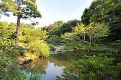 甘泉園公園の様子2。日本庭園のようになっている場所があります。(2014-07-31,共用部,ENVIRONMENT,1F)