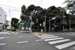 シェアハウスの近くにある哲学堂公園を越えると中野区です。(2010-09-15,共用部,ENVIRONMENT,1F)