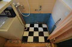 シャワールームは全体的にザックリとしたつくりです。(2011-06-24,共用部,BATH,1F)