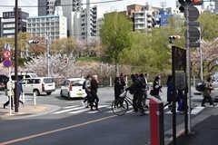各線・市ケ谷駅周辺の様子。(2019-04-12,共用部,ENVIRONMENT,1F)