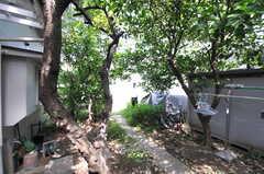 庭の様子。耕せば菜園として使えるスペースがあります。(2013-08-30,共用部,OTHER,1F)