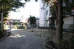 シェアハウスの裏手にある公園。(2011-11-01,共用部,ENVIRONMENT,1F)