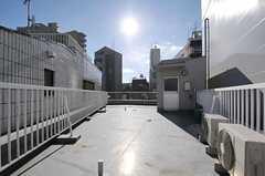 屋上の様子。(2012-12-24,共用部,OTHER,4F)
