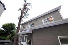 シェアハウスの外観。大きな杉の木がシンボルです。(2010-09-14,共用部,OUTLOOK,1F)
