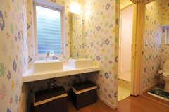 廊下に設置された洗面台の様子。(2010-09-14,共用部,OTHER,1F)