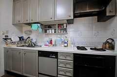 キッチンの様子。(2013-04-04,共用部,KITCHEN,2F)