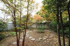 リビングから見た庭の様子。(2012-11-19,共用部,OTHER,1F)
