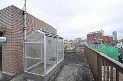温室があります。(2012-11-19,共用部,OTHER,3F)