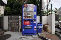 玄関には自動販売機が設置されています。(2011-06-21,共用部,OTHER,1F)