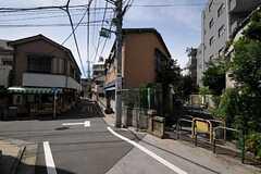 シェアハウスから都営大江戸線・西新宿五丁目駅へ向かう道には八百屋さんや小さな遊歩道があります。(2011-06-21,共用部,ENVIRONMENT,1F)