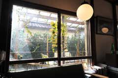 リビングから庭を見る。(2010-12-04,共用部,LIVINGROOM,1F)