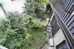 ベランダから見た庭の様子。(2013-10-17,共用部,OTHER,2F)