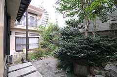 庭の様子。(2013-10-17,共用部,OTHER,1F)