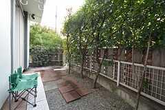 庭の様子2。道路側からの目線は、植栽で遮られています。(2014-11-12,共用部,OTHER,1F)