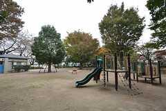塚山公園の様子。(2014-11-12,共用部,ENVIRONMENT,1F)