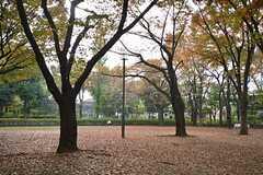 塚山公園の様子2。(2014-11-12,共用部,ENVIRONMENT,1F)
