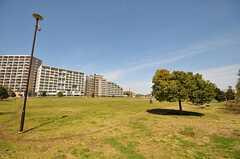 徒歩2分ほどのところにある桃井原っぱ公園。(2012-02-14,共用部,ENVIRONMENT,1F)