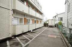 自転車置場の様子。(2010-03-01,共用部,GARAGE,1F)