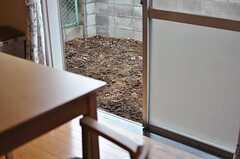 菜園が賑やかになると、リビングからの風景も楽しくなりますね。(2011-07-28,共用部,LIVINGROOM,1F)