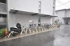 自転車置場の様子。(2009-08-31,共用部,GARAGE,1F)