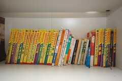 ガイドブックがずらり。運営事業者さんの色が良く出ている。(2008-07-23,共用部,OTHER,1F)