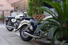 駐輪場の様子。オーナーさん曰く、バイカー大歓迎とのことです。奥に見えるのは知る人ぞ知る、ある意味で伝説のバイクだそうです。(オーナーさんの私物)(2013-10-07,共用部,GARAGE,1F)