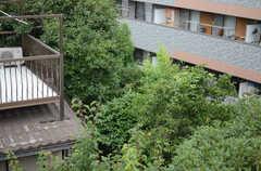 屋上からの景色。緑がたくさんあります。(2013-07-05,共用部,OTHER,3F)