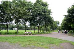 シェアハウス近くにある公園の様子。(2013-07-05,共用部,ENVIRONMENT,1F)